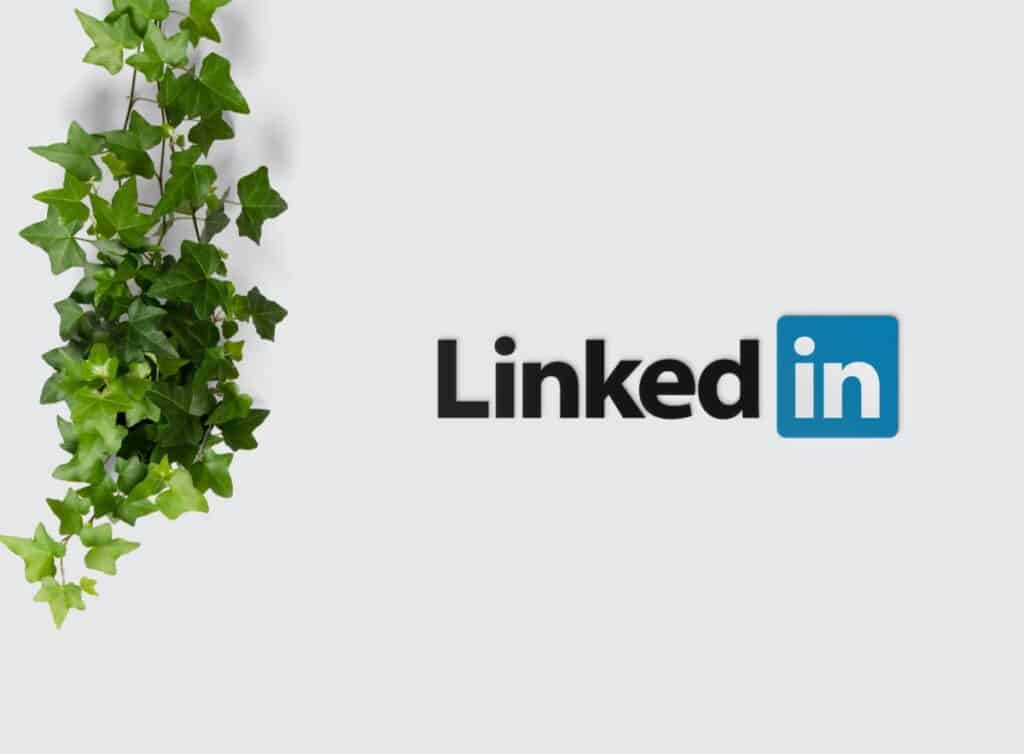 LinkedIn image for is social media good or bad for writers